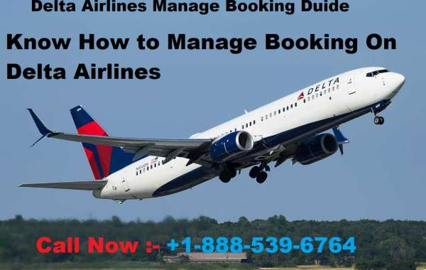 How to Book Extra Seat on Delta Airlines?