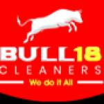 Bull18 Cleaners Profile Picture