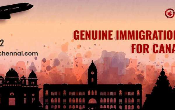 Live and Work in Canada with a Work Permit – Novus Immigration Chennai