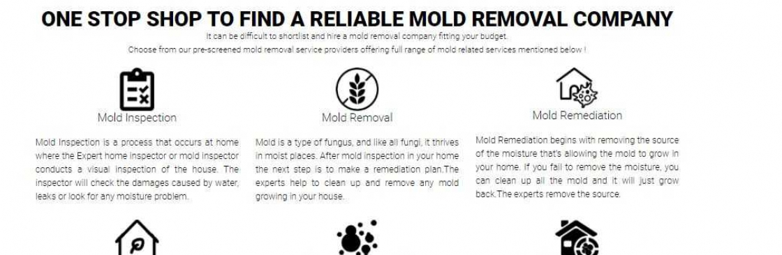 ALL US Mold Removal & Remediation - Clearwater FL Cover Image