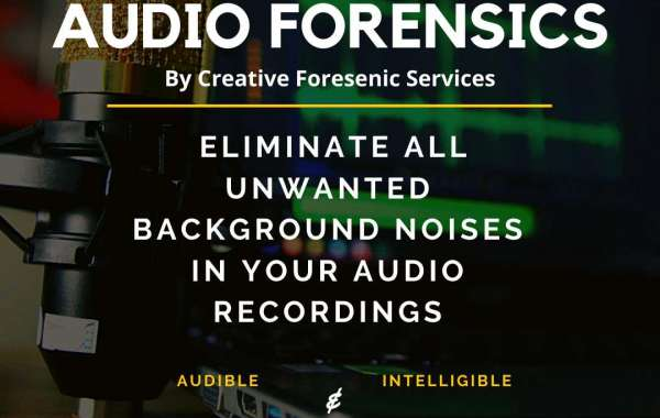 Forensic Audio Analysis: A Method to Confirm the Accuracy of Your Digital Audio Evidences