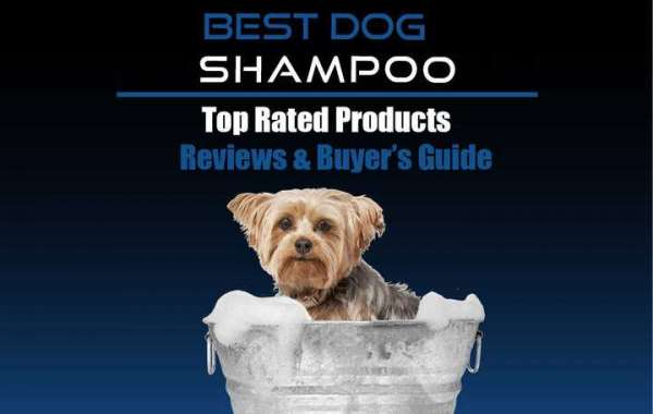 Best Shampoo For Dogs Reviews
