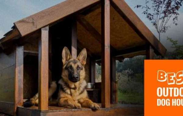 Best Outdoor Dog Houses Review