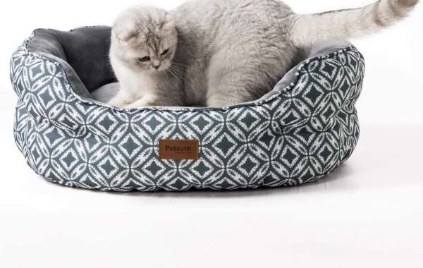 Benefits of Having a Cat Bed for Your Cat