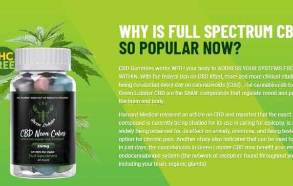 How To Increase Your Green Lobster CBD Gummies Site's Domain Authority?