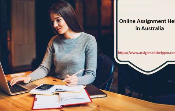 The Most Underrated Assignment Help Products You Need to Know