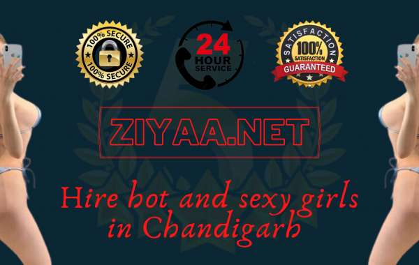 Ziyaa escorts in Chandigarh at an affordable price