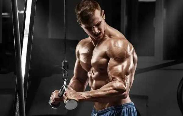 How Does It TestoViara Muscle Enhancement Work ?