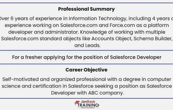Salesforce Developer Resume: Sample & Step-By-Step Writing Guide